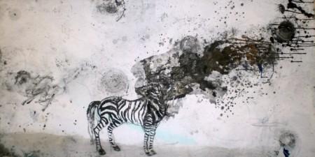 Explosiu concepte de la zebra